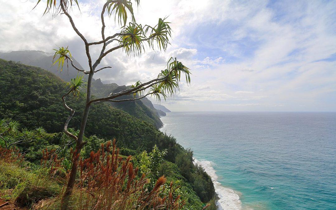 Kalalau_Trail,_Napali_Coast,_Kapaa