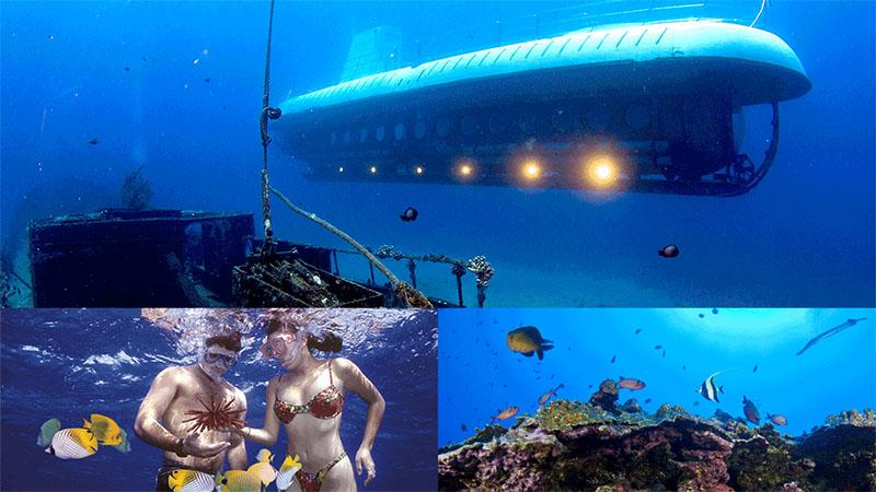 Submarine Maui, Hawaii